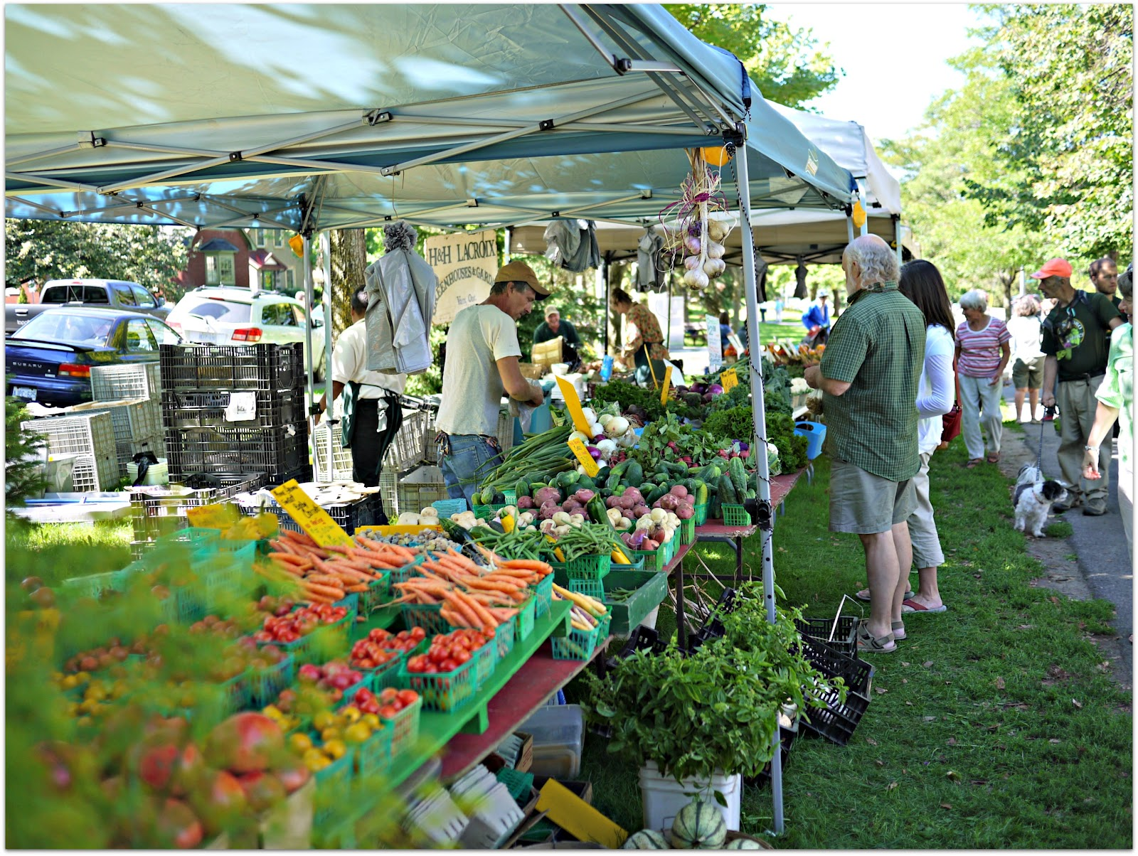 Virginia's Farmers Markets
